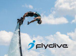 FlyDive